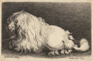 Parezco un león, pero soy un caniche. ¿Me quieres? Fuente: Wikipedia